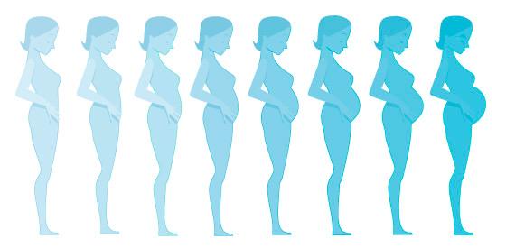 تغییرات دوران بارداری